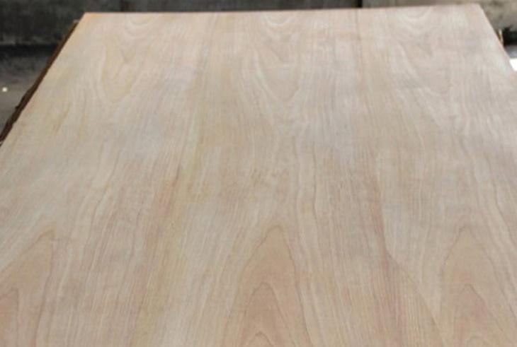 Ván veneer gỗ gõ